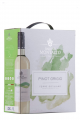 Montalto Pinot Grigio